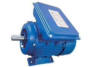 Y Series Single Phase AC Electric Motor